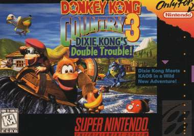 http://revistagames.files.wordpress.com/2009/12/donkey-kong-country-3.jpg